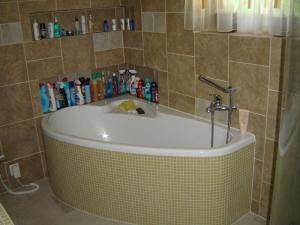 Ванна VAGNERPLAST SELENA 160 x 105 L/R, фото